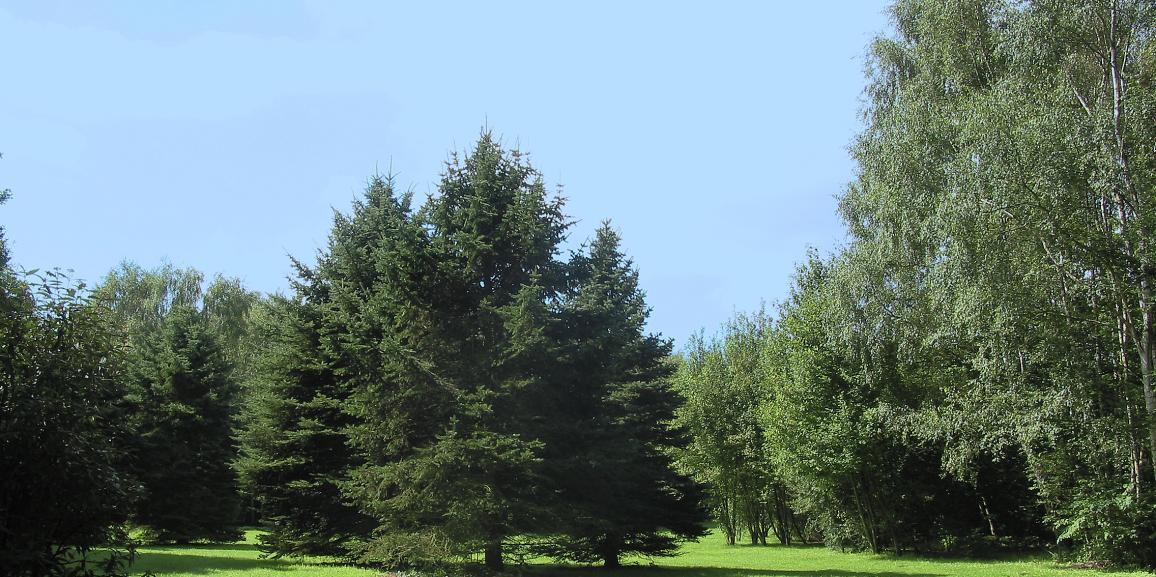 Minigolf im Kurpark in Bad Westernkotten